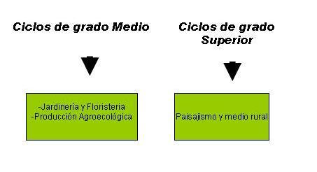 Ciclos Formativos Arkaute